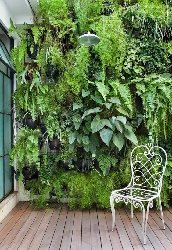 вертикальный сад на стену купить
