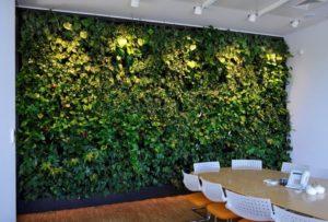 Креативные вертикальные сады — возвращение к природе в городской суете